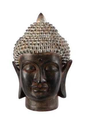 BUDDHA STOR